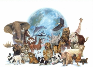 animal_rights