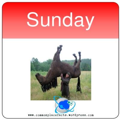 Stupid laws Toronto illegal drag horse Sunday