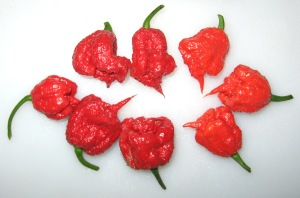 Carolina Reaper Pepper