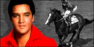 elvis wager horse odds wimbledon betting