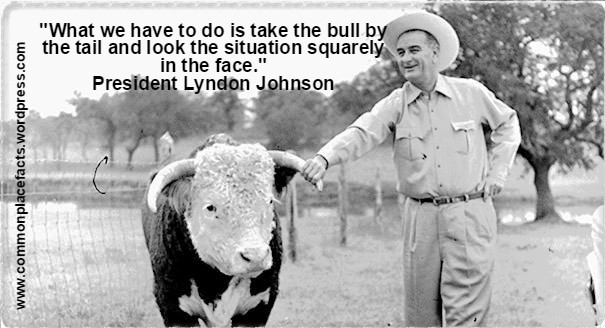 funny quotes Lyndon Johnson take bull by tail look situation in face