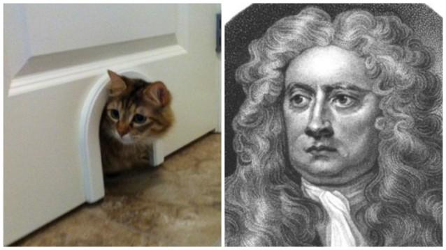cat flap door inventions Isaac Newton