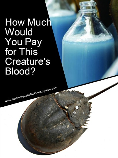 value of horseshoe crab blood