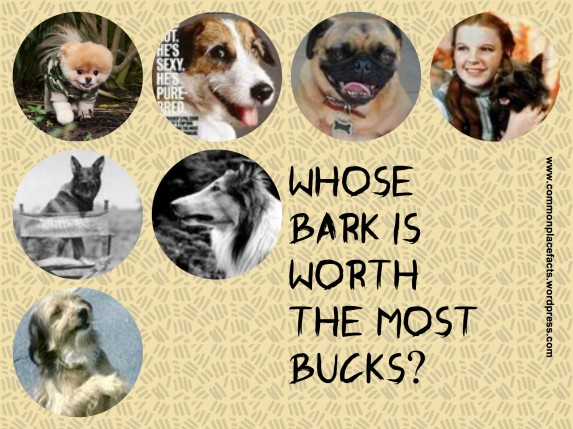 which dog actor earns the most