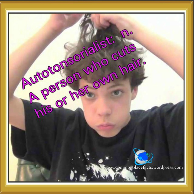 autotonsorialist a person who cuts his or her own hair