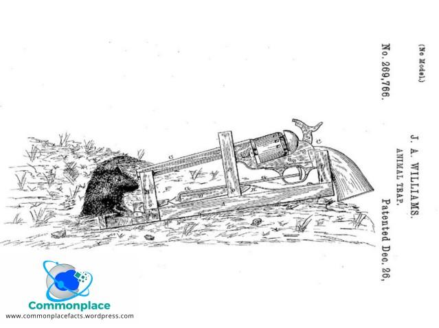 Strange patent mousetrap with gun