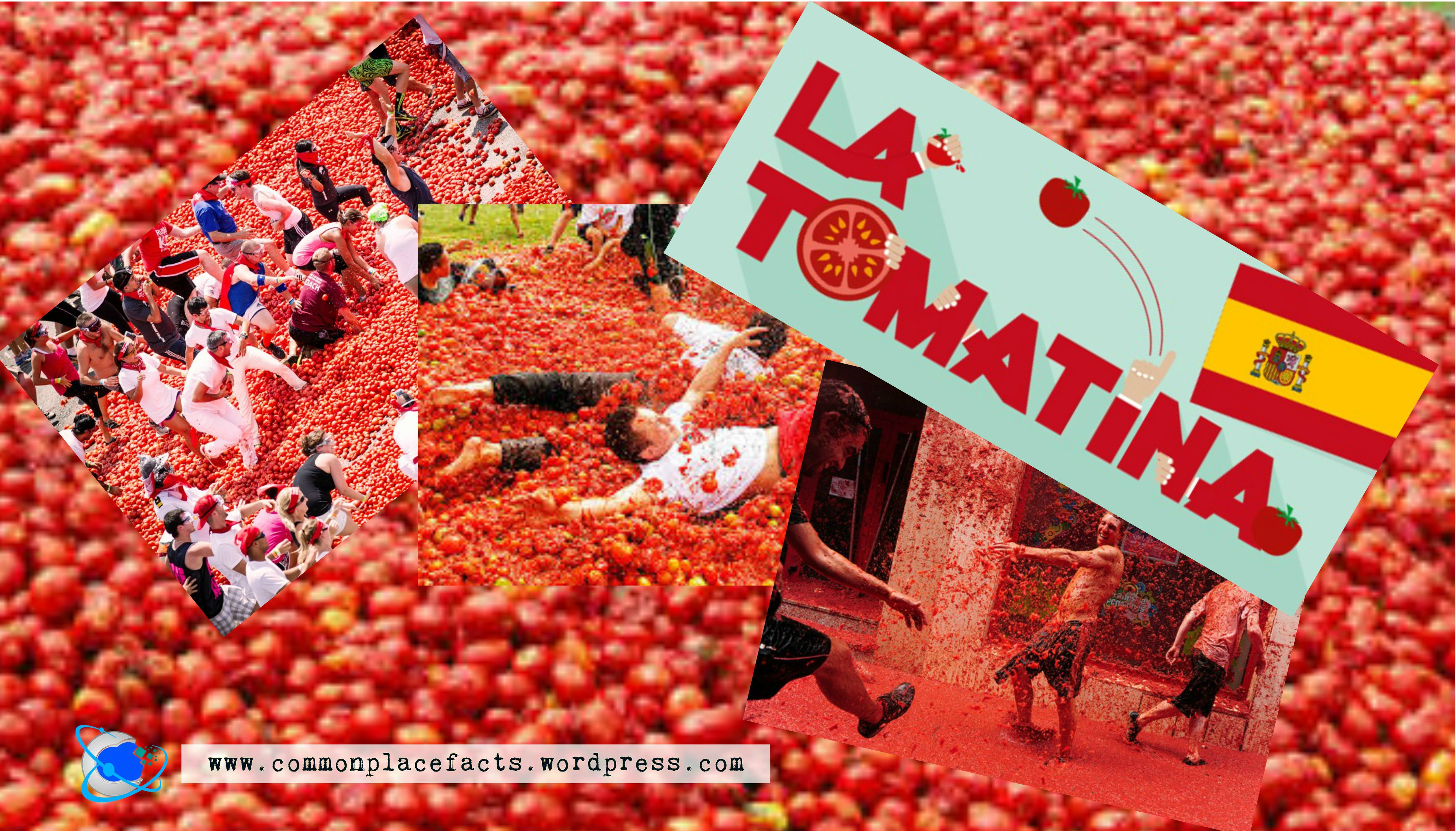 La Tomatina Facts