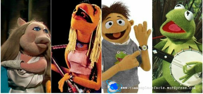 most muppets are left-handed