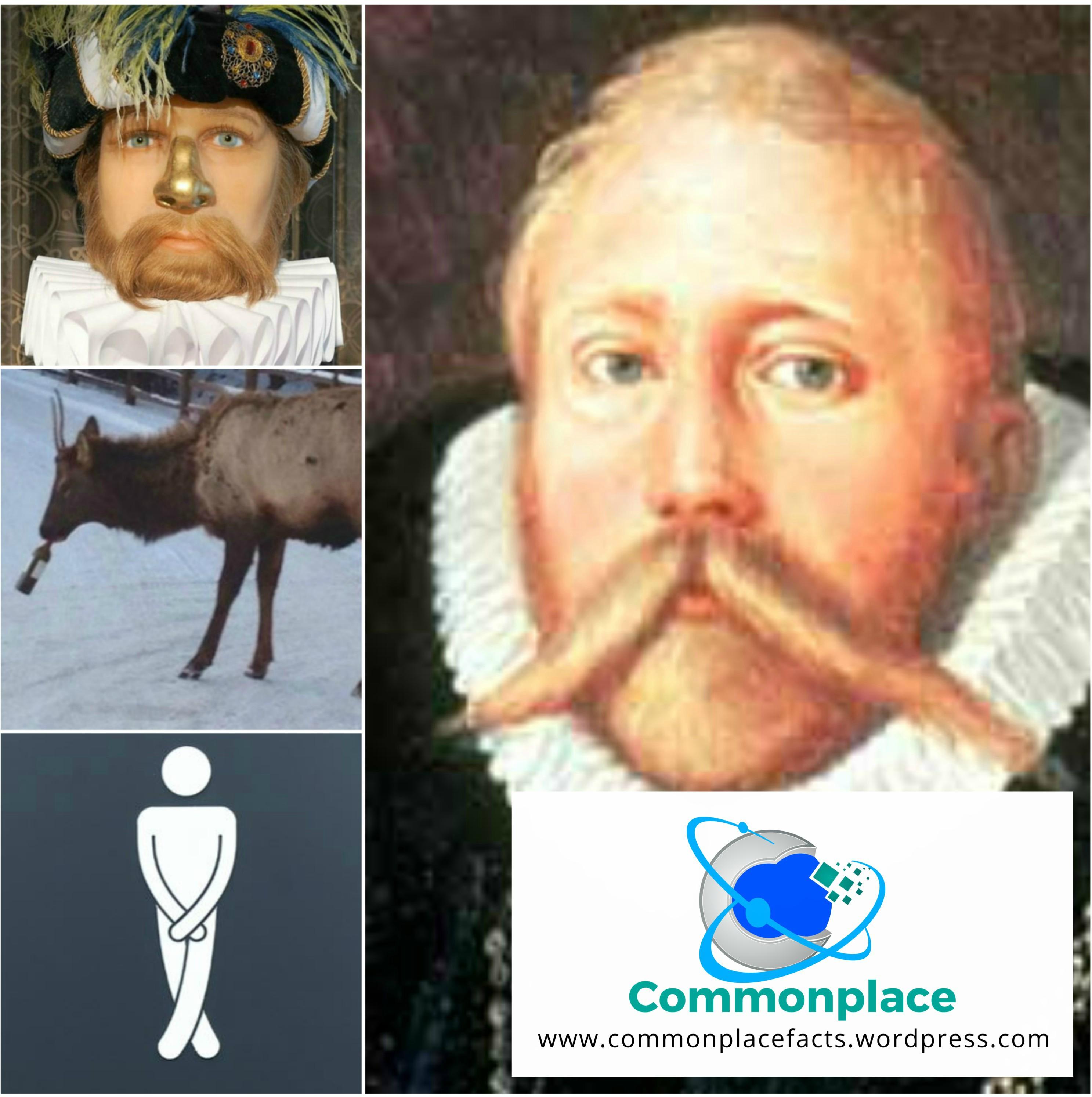 Tycho Brahe fun facts death nose drunk moose elk