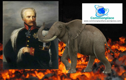 Field Marshal Blucher delusions pregnant with elephant