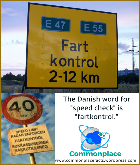 "the Danish word fartkontrol means ""speed check"""