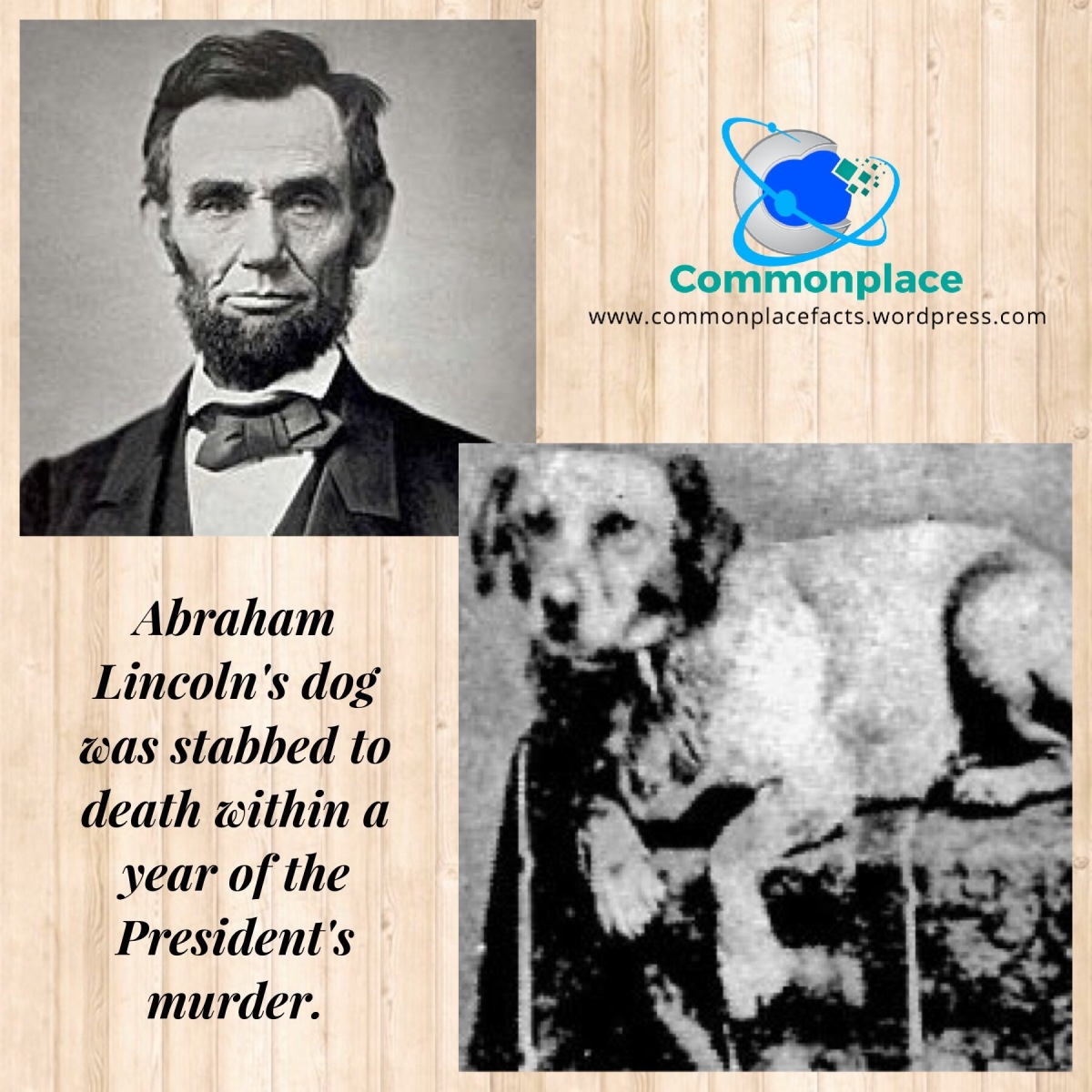 Lincoln's Dog Followed Him Even in Death