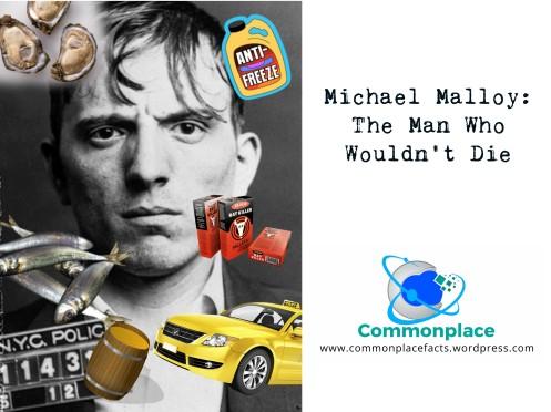 #michaelmalloy #murder #conspiraciess #crime #funfacts #insurancefraud
