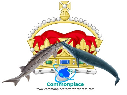Under royal prerogative British king or queen owns all sturgeon and whales