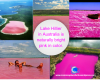 #lakehillier #australia #pinkwater #nature #weird #beautiful #funfacts