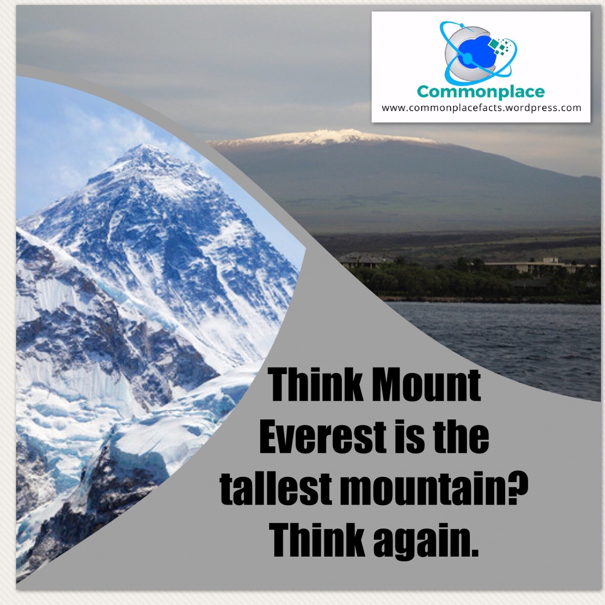 Do You Think You Know the Tallest Mountain? You Are Probably Wrong