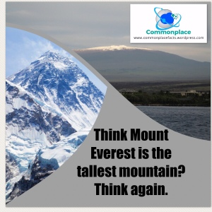 Hawaii's Mauna Kea is the tallest mountain. Mount Everest is the highest