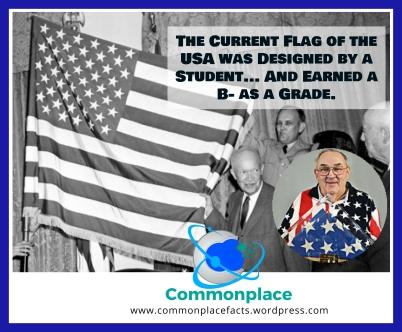 #flag #USA #school #grades #design