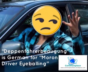 #German #WordsWeNeed #WordOfTheDay #driving #languages