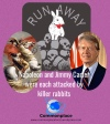 #rabbits #KillerRabbits #MontyPython #JimmyCarter #Napoleon