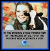 #WizardofOz #Toto #cows #dogs #movies #theater #entertainment
