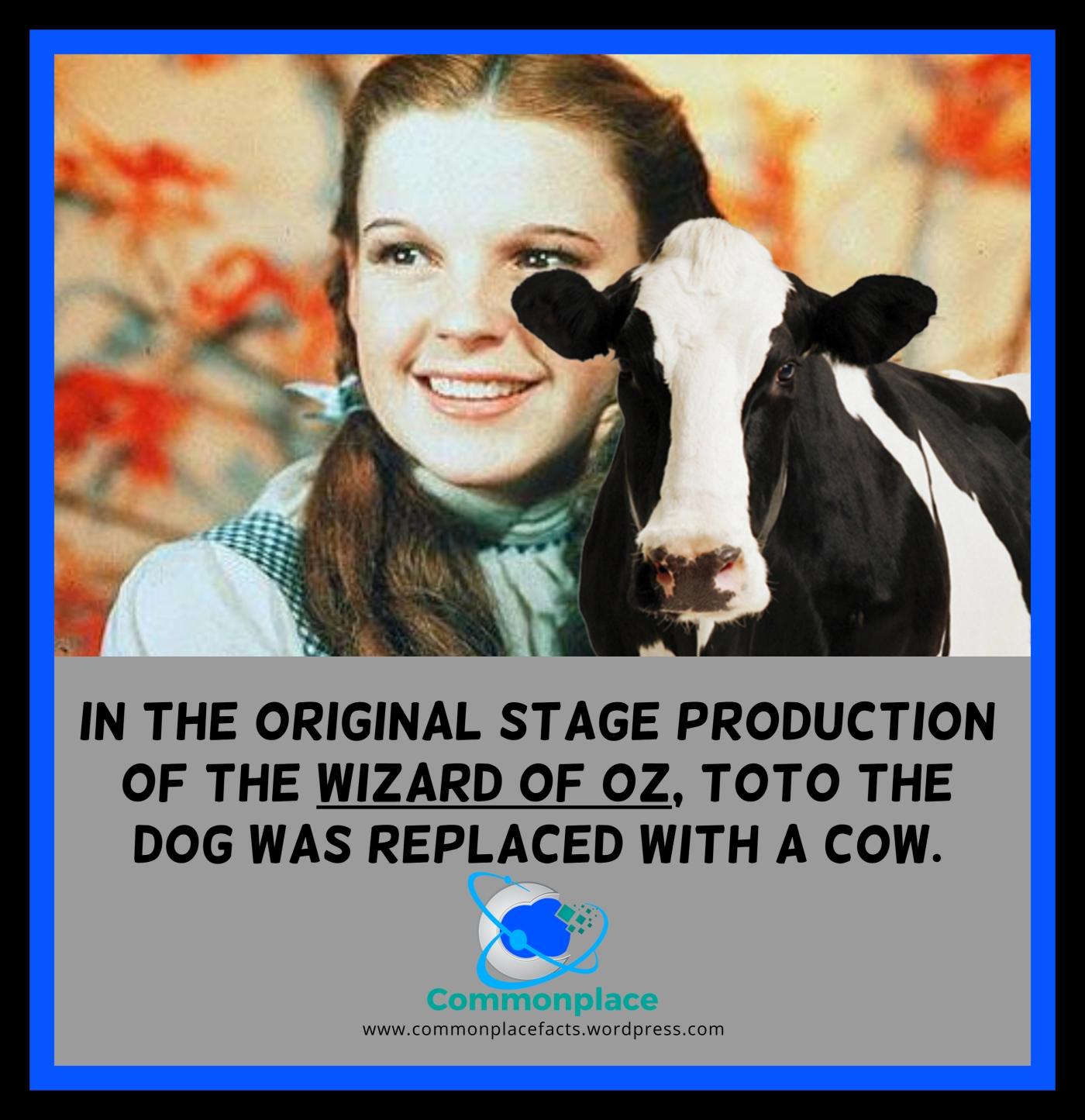 #WizardofOz #Toto #cows #dogs #movies #theater #entertainment