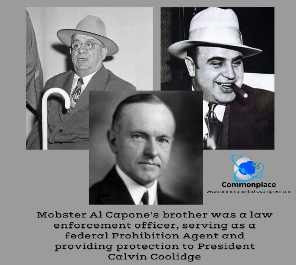 #AlCapone #mob #mobsters #Prohibition #CalvinCoolidge #JamesCapone