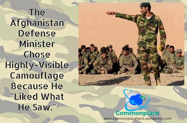 #Afghanistan #camouflage #militaryspending #wastefulspending