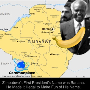 #Zimbabwe #Banana #names #FunnyNames #StupidLaws