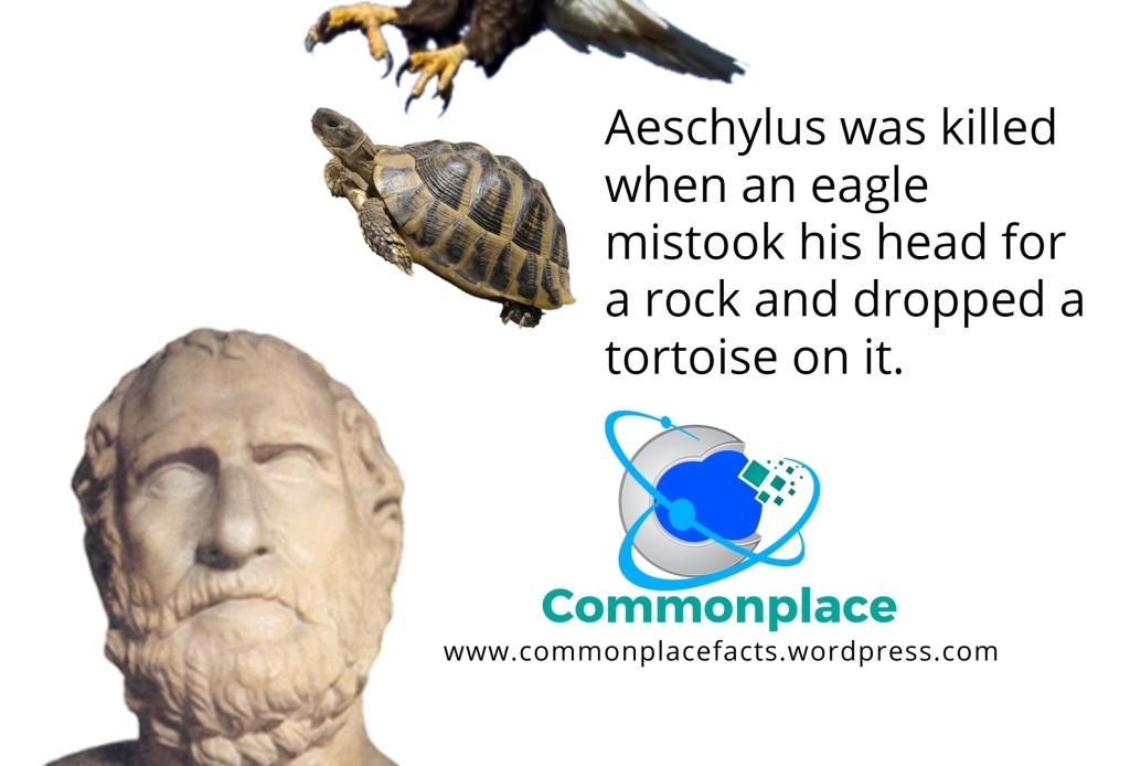 Aeschylus death