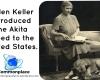 #Akitas #dogs #pets #breeds #HelenKeller #Japan