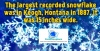 #snowflakes #records #snow