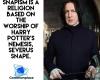 #HarryPotter #Snape #Snapism #Snapists #fiction-based-religion