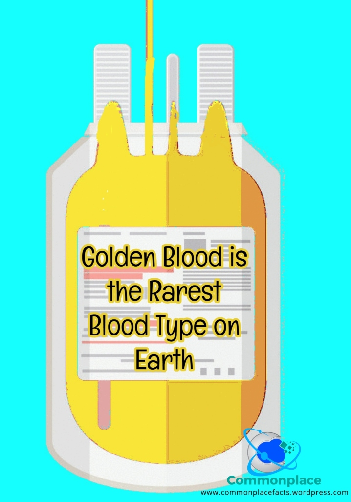 Golden Blood is the Rarest Blood Type on Earth – Commonplace Fun Facts