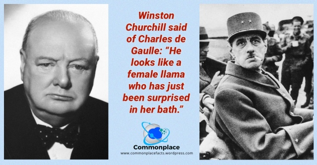#Churchill #DeGaulle #llamas #insults #quotes