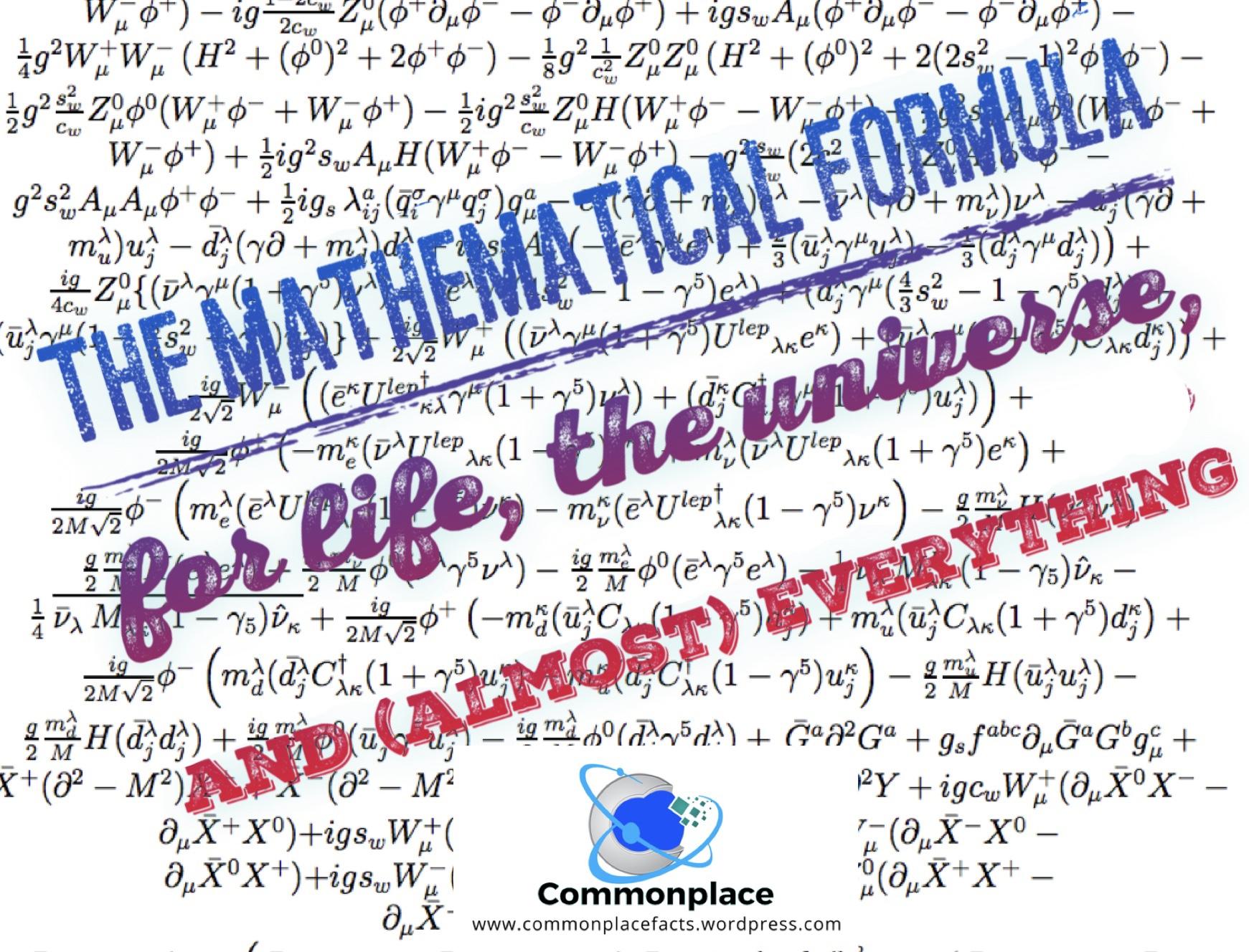 #physics #calculus #quantumtheory #particlephysics #standardmodel #lagrangian