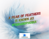 #pteranophobia #phobias #feathers #fear