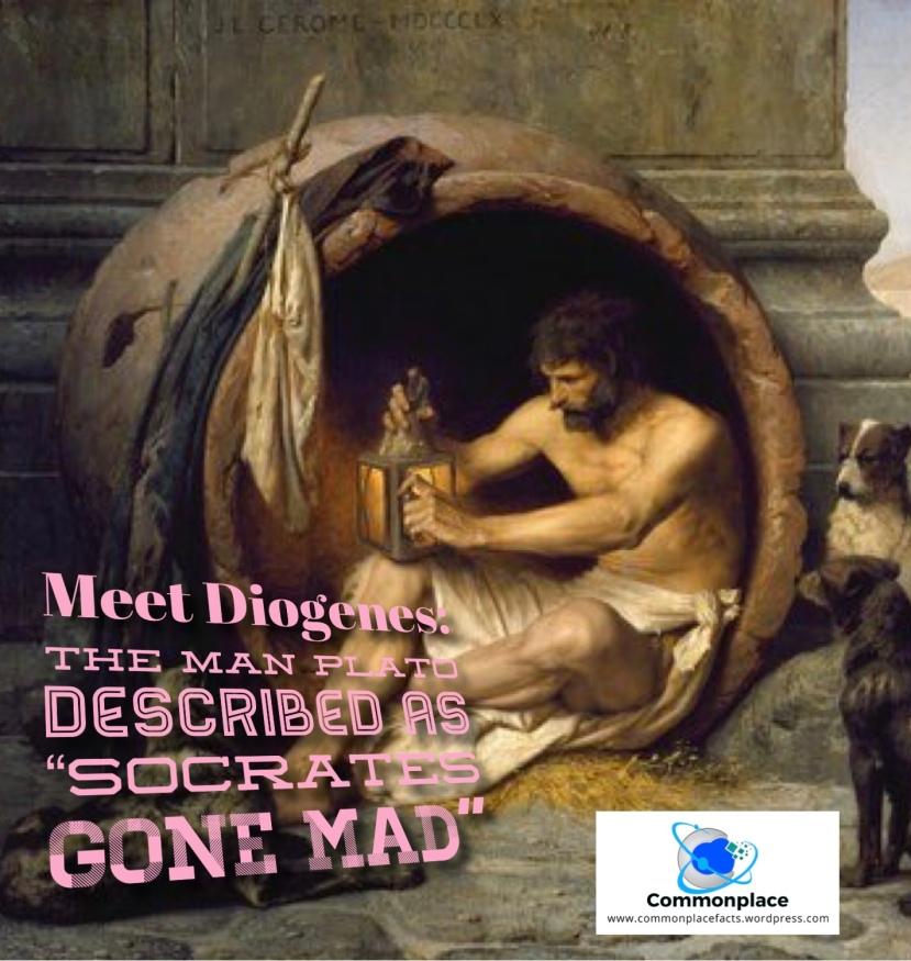 #Diogenes #Plato #Philosophers #Socrates #cynicism #cynics #eccentrics
