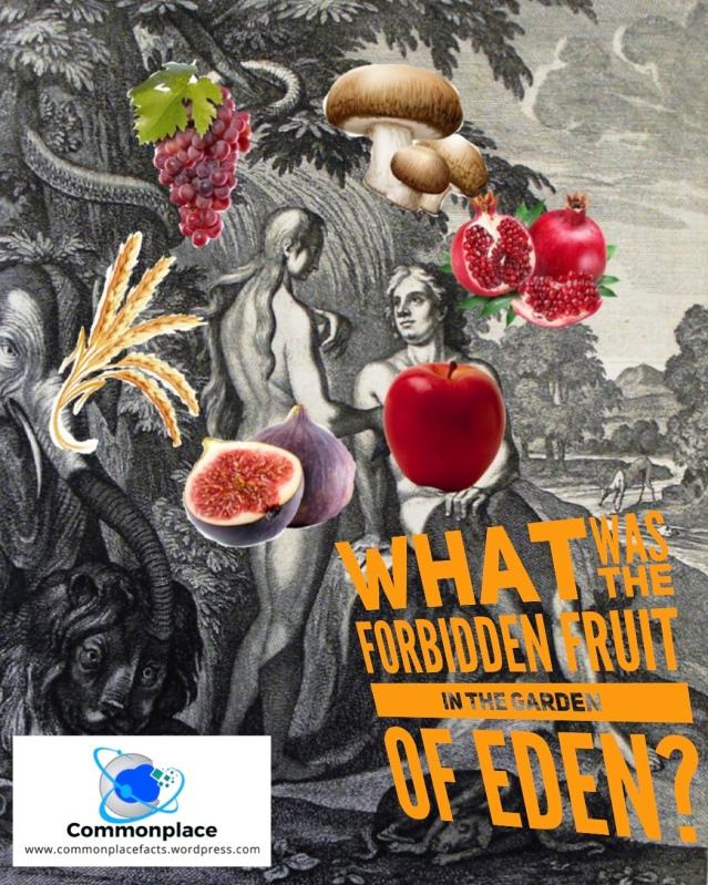 #ForbiddenFruit #Eden #AdamandEve #apples #Genesis