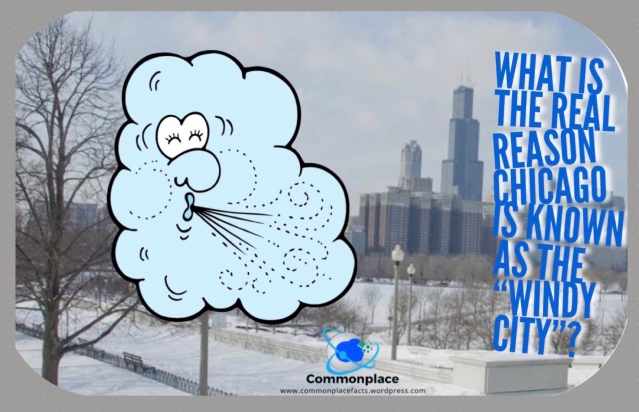 #Chicago #WindyCity #Nicknames