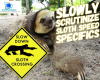 #sloths #speed #animals #funfacts