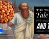 #Pythagoras #beans #strangedeaths #Pythagoreanism