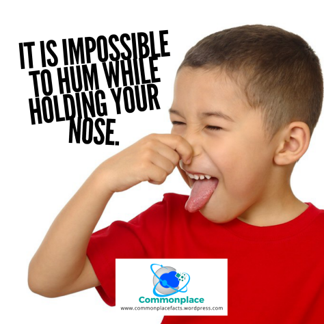 #funfacts #humming #noses #impossible