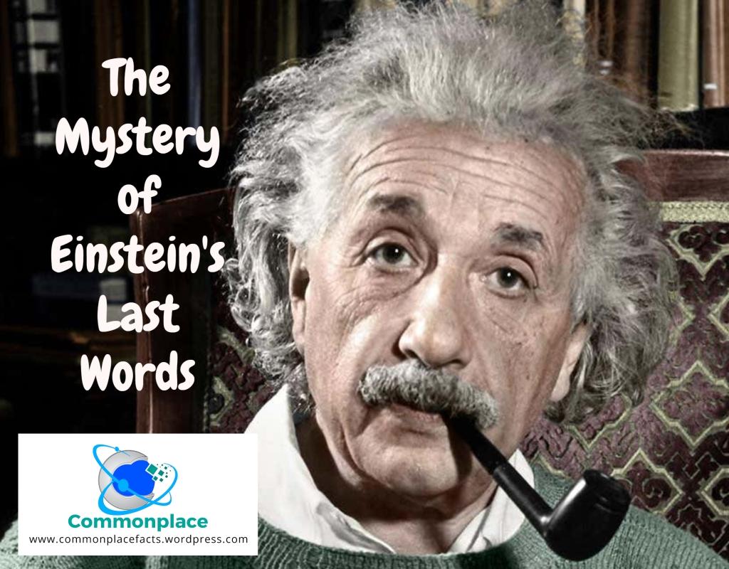 Einstein's Last Words