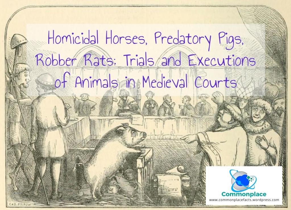 #animals #capitalpunishment #executions