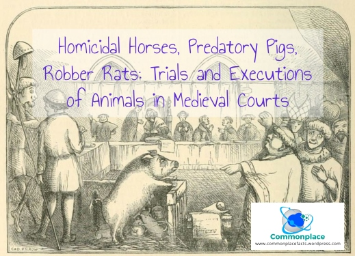 #animals #capitalpunishment #executions