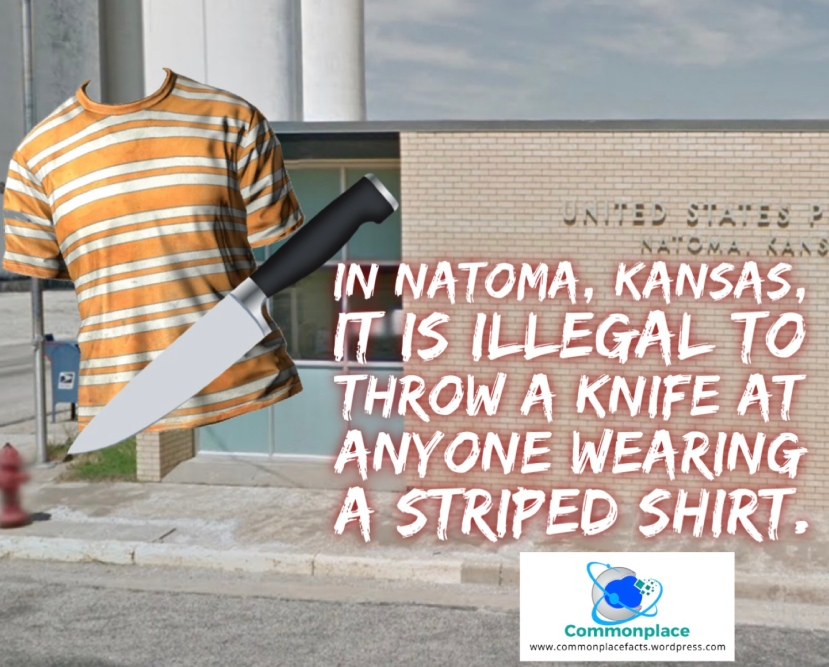 In Natoma, Kansas, it is illegal to throw a knife at anyone wearing a striped shirt.
