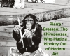 #Art #ModernArt #PierreBrassau #monkeys #chimpanzees #artists