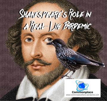 #Shakespeare #starlings #Birdemic #birds #badideas
