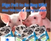 #Ben&Jerry's #Icecream #pigs #food